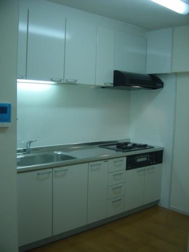使いやすいシステムキッチンになって大満足!